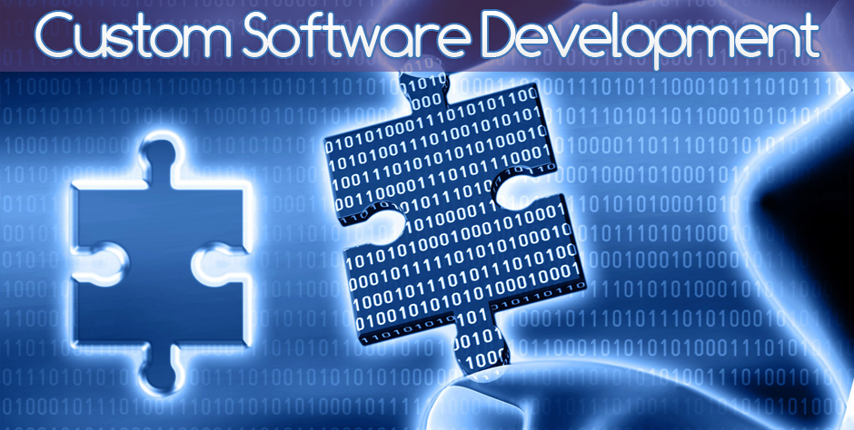 Custom software development: Importance in business world