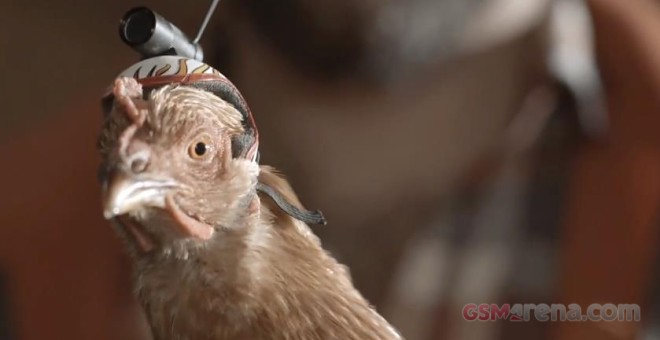 Check Out LG G2's OIS Camera 'Chicken Cam'